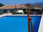 cla7199: Resale Villa for Sale in Arboleas, Almería